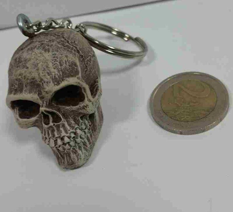 teschio cranio